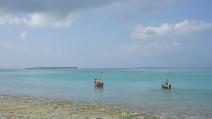 Blue Safari - boats