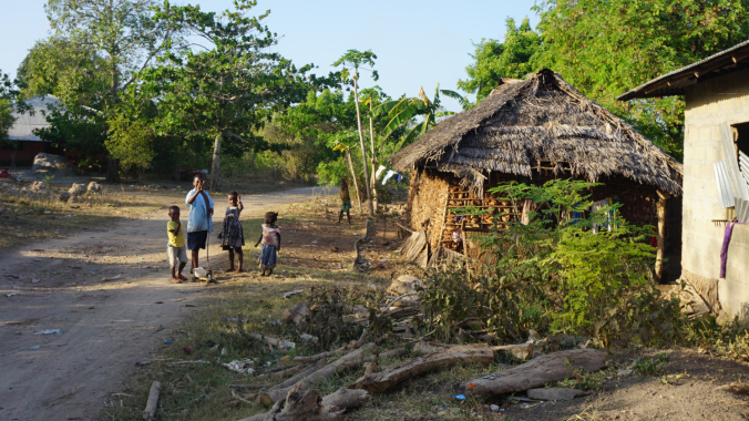 Blue Safari - zanzibar houses