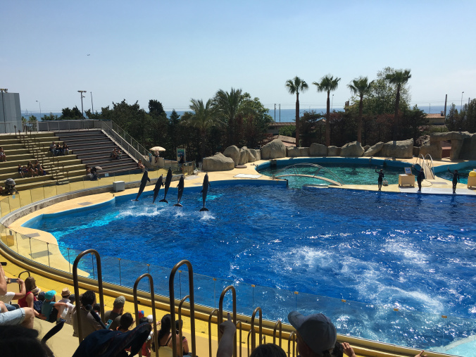 Cannes - marineland antibes 4