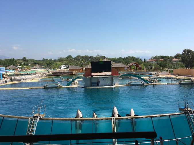 Cannes - marineland antibes 5