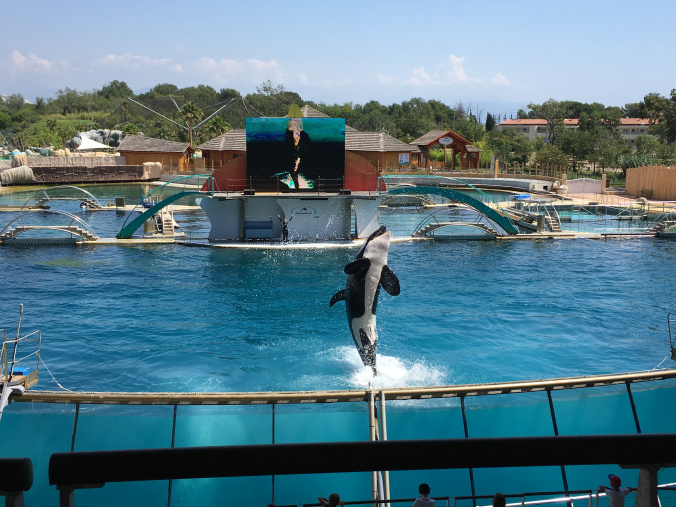 Cannes - marineland antibes 8