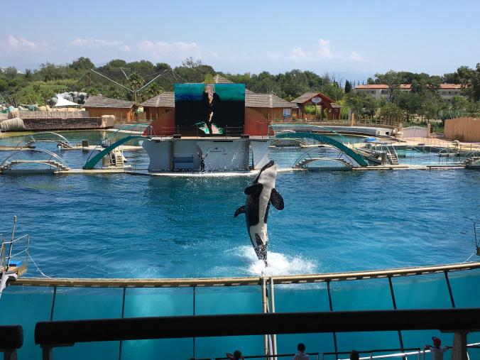 Cannes - marineland antibes 8