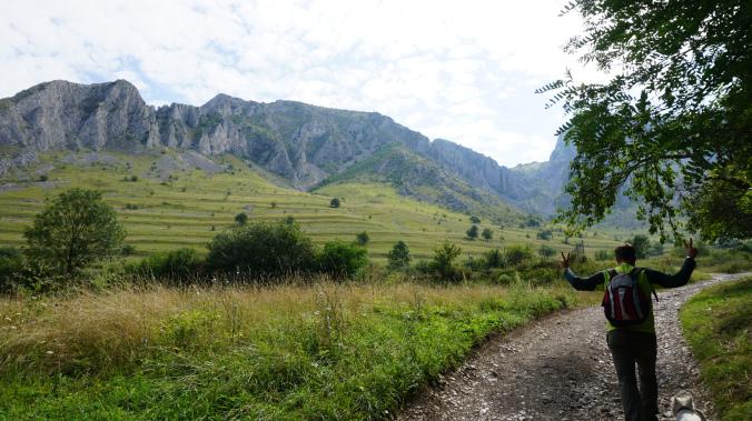 Coltesti - road