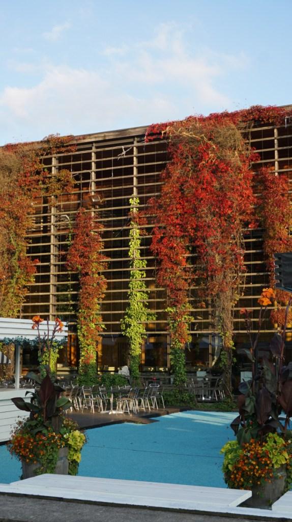 Goteborg - botanical garden3