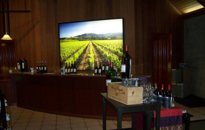 Napa Valley - winery3
