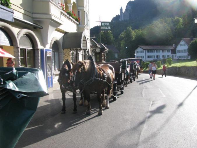 Neuschwanstein - horses