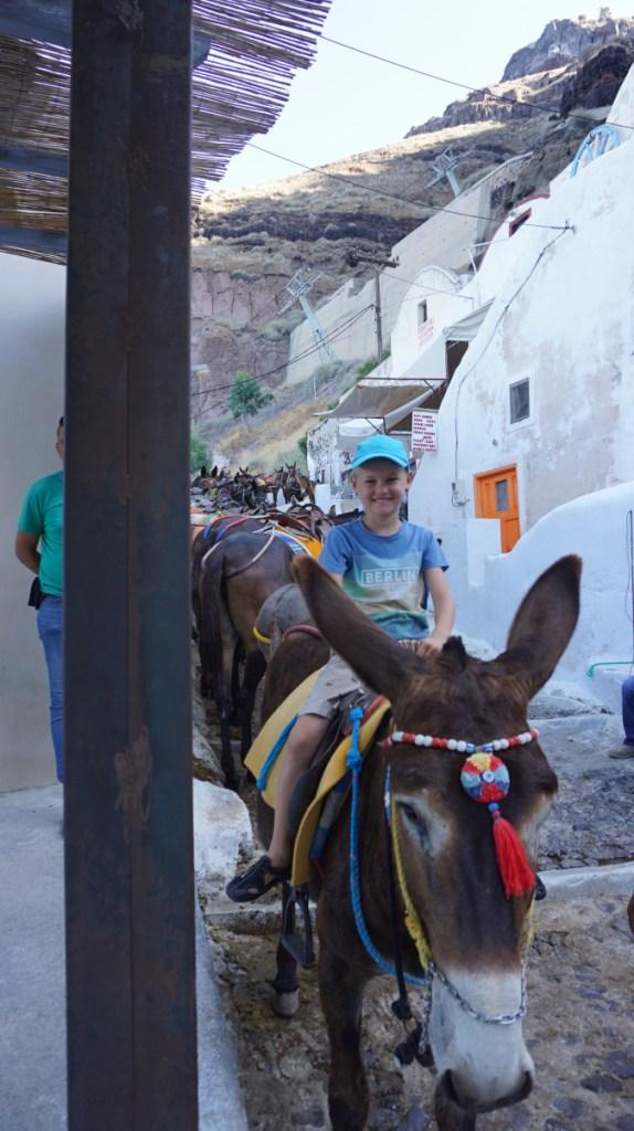 Santorini - fira donkeys