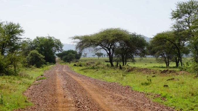 Serengeti - park