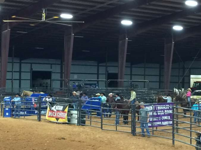 Texas - rodeo pic