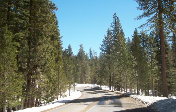 Yosemite - road
