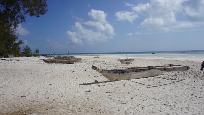 Zanzibar Tanzania - beach