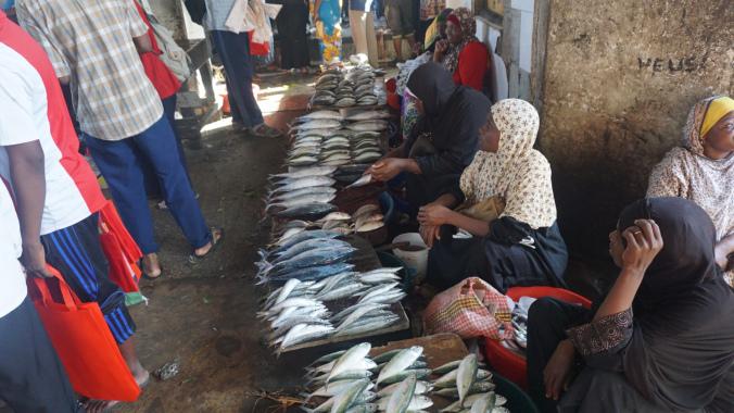 Zanzibar - stone town fish market1
