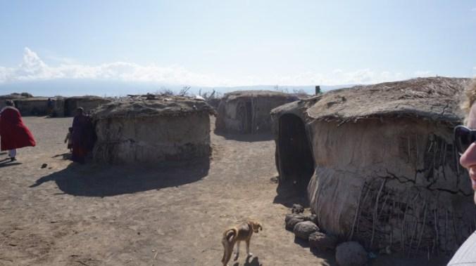 ngorongoro - masai village