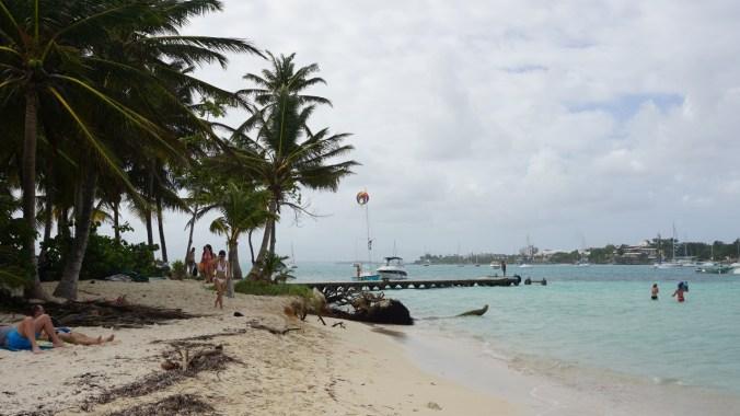 Guadeloupe - gosier island1