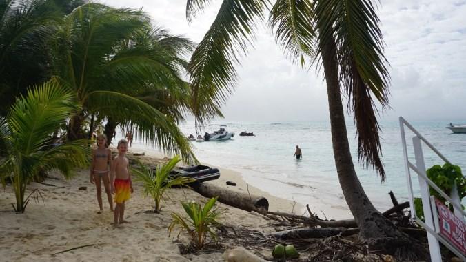 Guadeloupe - gosier island2