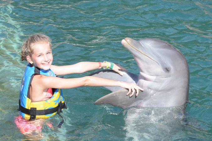 St. Kitts si Nevis - dolphin hug