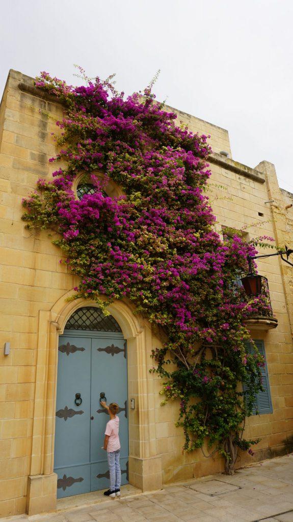 Malta - Mdina5