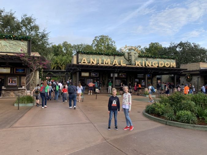 Animal Kingdom Orlando - entrance