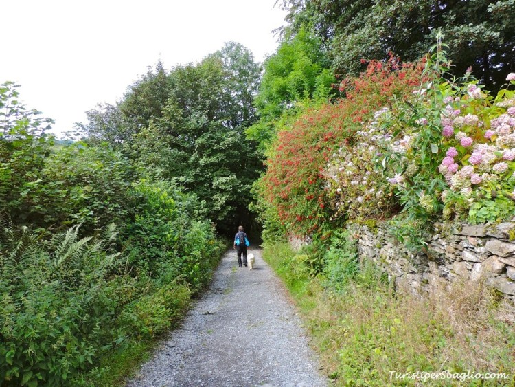 Sulle tracce di Beatrix Potter - Lake District strada per Hill Top - 08_new