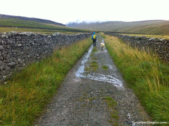 UK 2014 - 1° Climbing Ingleborough Mountain - Bentham - 06