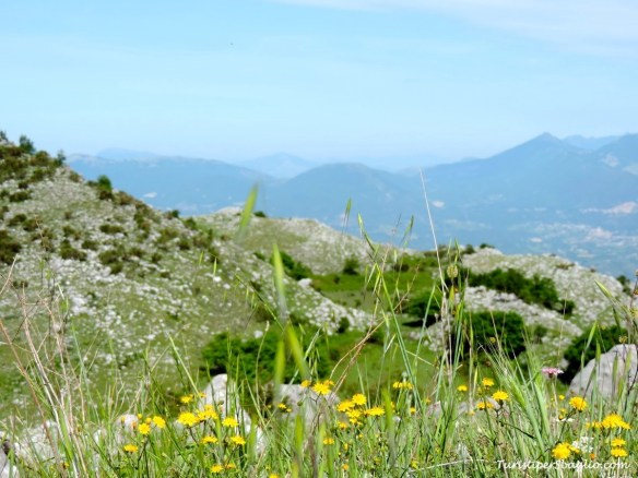 Parco Nazionale del Pollino - 01