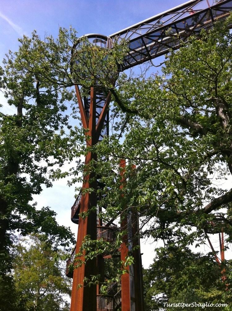 Tree Tops Walk Kew Gardens, Londra - Gran Bretagna