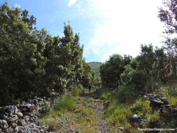 Acquafredda di Maratea, Passo Colla - 03_new