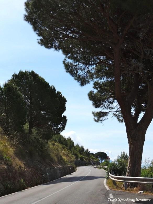 Sapri - Maratea Strada Panoramica - 153