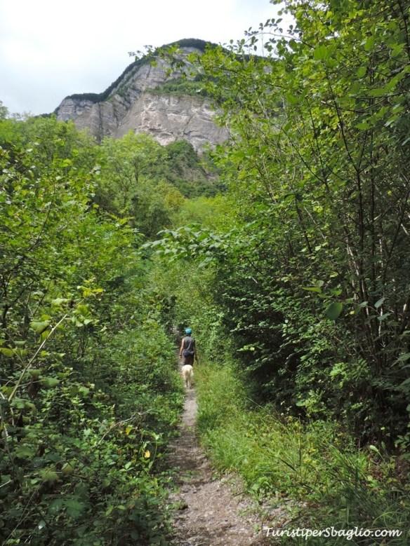 Un sentiero per Frodo si trova sempre