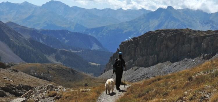 Blog Reading – Perché viaggio? La parola ai viaggiatori