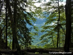 Hiking on Lake Bohinj Slovenia - 21_new