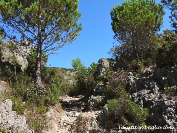 Cirque de Mourèze - Linguadoca - 022_new