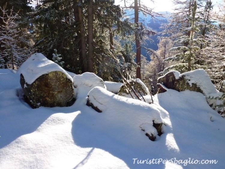 chandolin-svizzera-vallese-sentiero-per-le-ciaspole-14_new