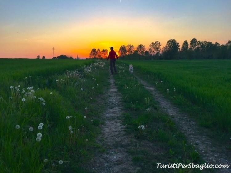 Udine tramonto