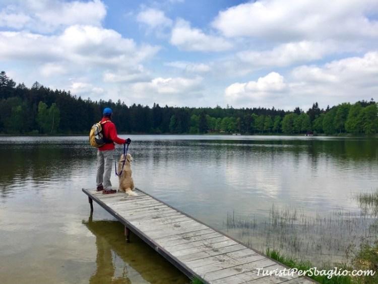 Lago di Zvule - Canada Ceco Boemia