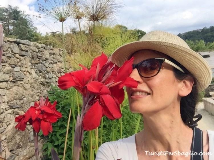 Turisti per Sbaglio alla Bambouseraie, Cevennes