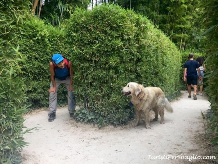 Labirinto, Bambouseraie Turisti per Sbaglio