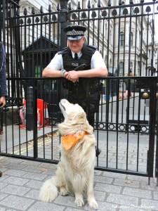 Frodo a Downing Street Londra - Turisti per Sbaglio