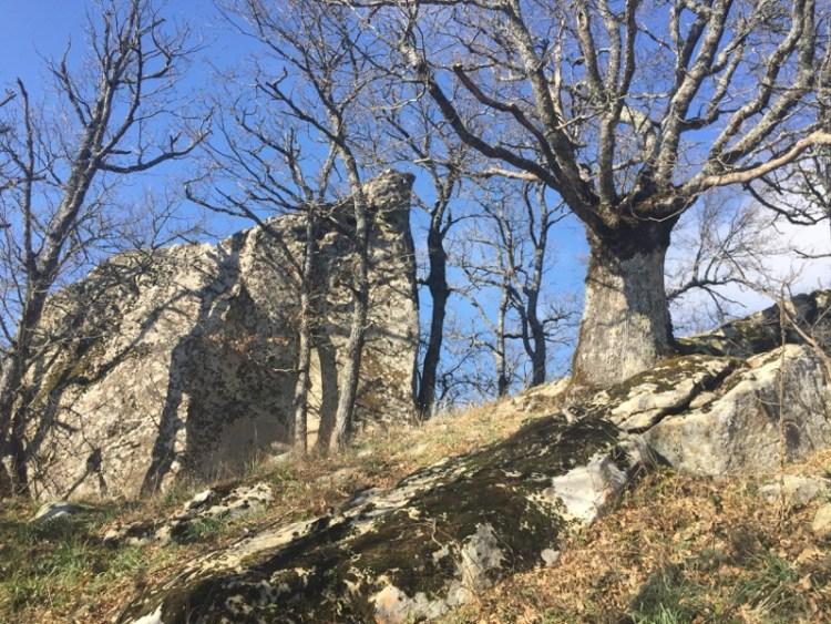 Monte Croccia Gallipoli Cognato Potenza