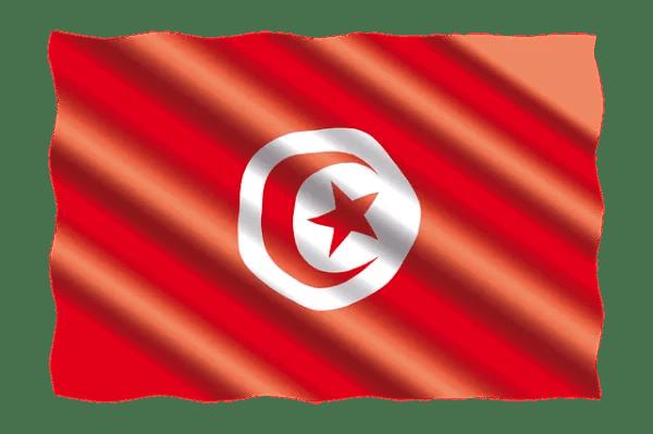 Tunus, tüm uluslararası uçuşları durdurdu.