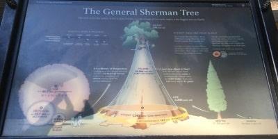 general-sherman-info