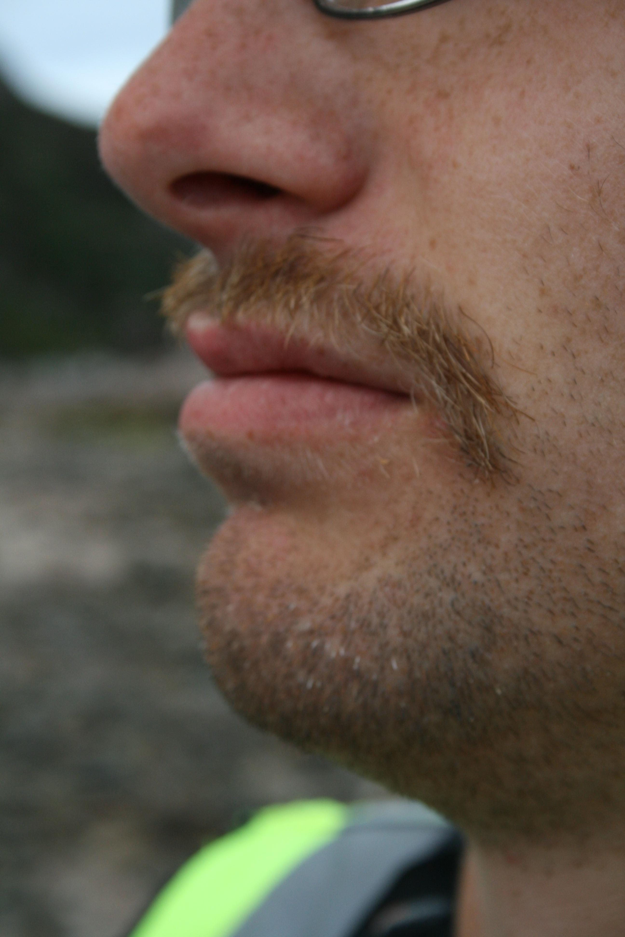Moustache sends his regards