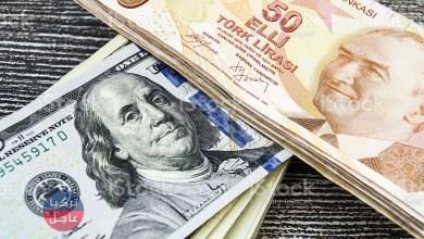 100 دولار كم ليرة تركية تساوي.. الليرة التركية تنخفض مقابل الدولار اليوم الأحد