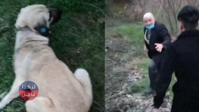 أخبار تركيا.. رجل مسن يُثـ.ـير ضـ.ـجة بعد ما فعله مع كلب في كوجالي (فيديو)