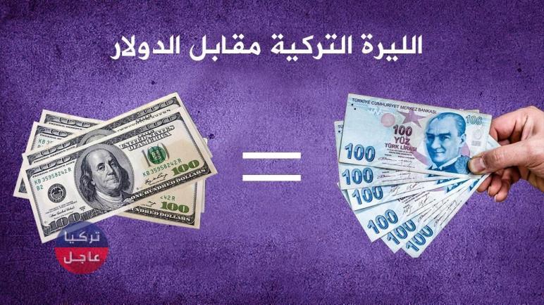 سعر الدولار في تركيا اليوم مقابل الليرة التركية.. 100 دولار كم ليرة تركية تساوي