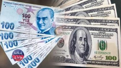 100 دولار كم ليرة تركية تساوي اليوم
