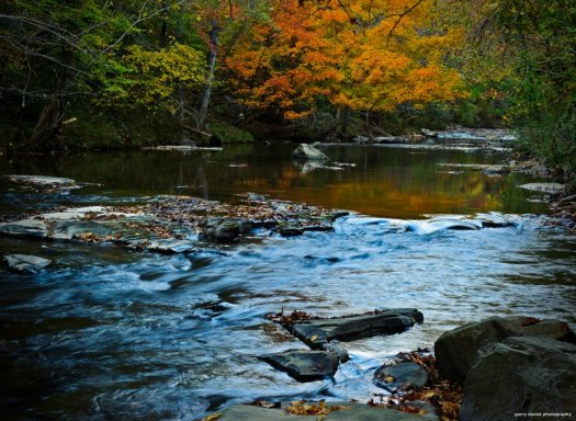 Fall at Turkey Creek