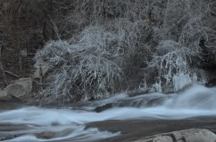 """Ice on the """"Falls"""""""
