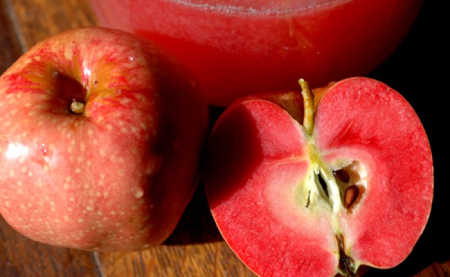 From Old Nonpareil To Lady Williams Apple Tasting Notes