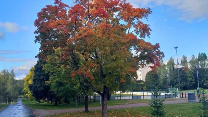 Syksy, Lahti